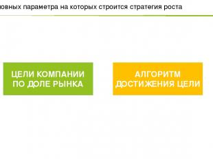 Два основных параметра на которых строится стратегия роста ЦЕЛИ КОМПАНИИ ПО ДОЛЕ
