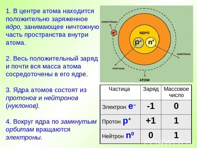 1. В центре атома находится положительно заряженное ядро, занимающее ничтожную часть пространства внутри атома. 2. Весь положительный заряд и почти вся масса атома сосредоточены в его ядре. 3. Ядра атомов состоят из протонов и нейтронов (нуклонов). …