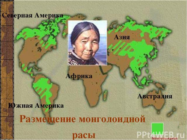 Размещение монголоидной расы Северная Америка Южная Америка Азия Африка Австралия