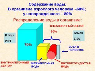 Содержание воды: В организме взрослого человека –60%; у новорожденного – 80% Рас