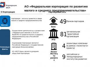 Партнерская сеть РГО Банк Институты развития Лизинг АО «Федеральная корпорация п