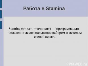 Работа в Stamina Stamina (от лат. «тычинки») — программа для овладения десятипал