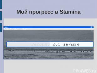 Мой прогресс в Stamina