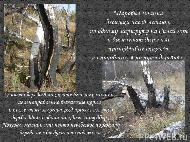 Шаровые молнии десятки часов летают по одному маршруту на Синей горе и выжигают дыры или причудливые спирали на попавшихся по пути деревьях. У части деревьев на Склоне бешеных молний целенаправленно выжжены корни, а после этого энергоразряд прожег и…