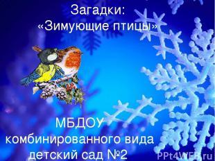 Загадки: «Зимующие птицы» МБДОУ комбинированного вида детский сад №2 логопед: Кн
