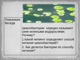Поисковая беседа Цианобактерии нередко называют сине-зелеными водорослями. Почем