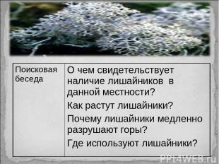 Поисковая беседа О чем свидетельствует наличие лишайников в данной местности? Ка