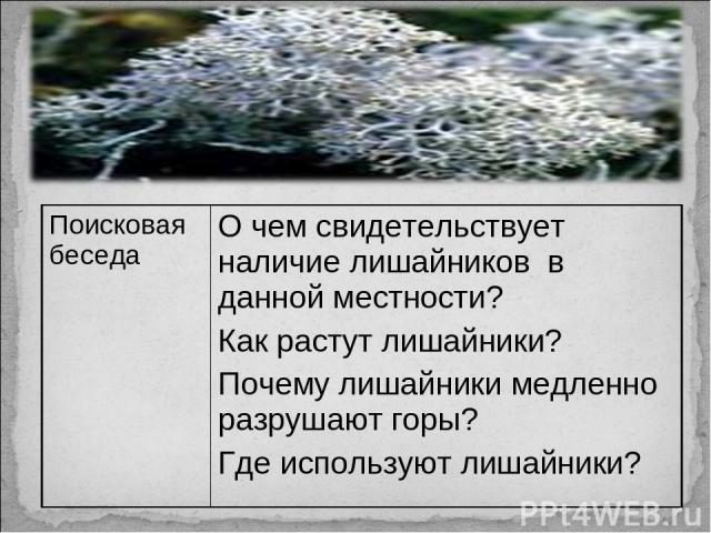 Поисковая беседа О чем свидетельствует наличие лишайников в данной местности? Как растут лишайники? Почему лишайники медленно разрушают горы? Где используют лишайники?