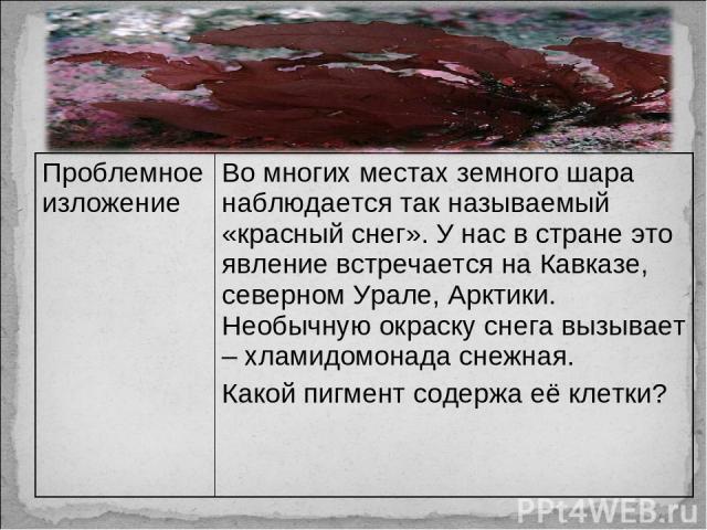 Проблемное изложение Во многих местах земного шара наблюдается так называемый «красный снег». У нас в стране это явление встречается на Кавказе, северном Урале, Арктики. Необычную окраску снега вызывает – хламидомонада снежная. Какой пигмент содержа…