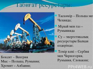 Табиғат ресурстары: Таскөмір – Польша мен Чехияда; Мұнай мен газ – Румынияда Су