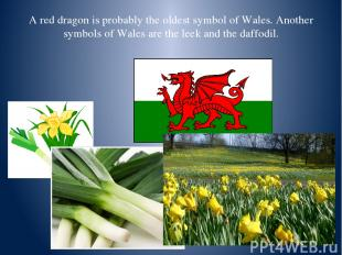 A red dragon is probably the oldest symbol of Wales. Another symbols of Wales ar