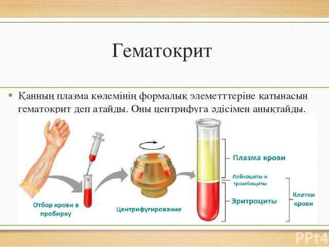 Гематокрит Қанның плазма көлемінің формалық элеметттеріне қатынасын гематокрит деп атайды. Оны центрифуга әдісімен анықтайды.