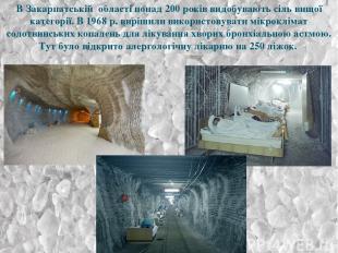 В Закарпатській області понад 200 років видобувають сіль вищої категорії. В 1968