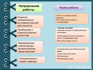 Развитие познавательно-исследовательской деятельности  Направления работы. Прио