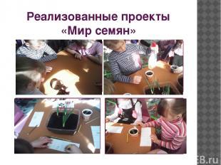Реализованные проекты «Мир семян»