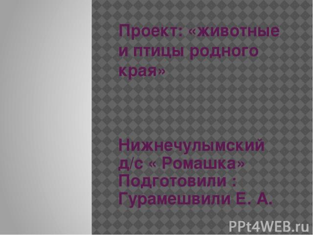 Проект: «животные и птицы родного края» Нижнечулымский д/с « Ромашка» Подготовили : Гурамешвили Е. А.