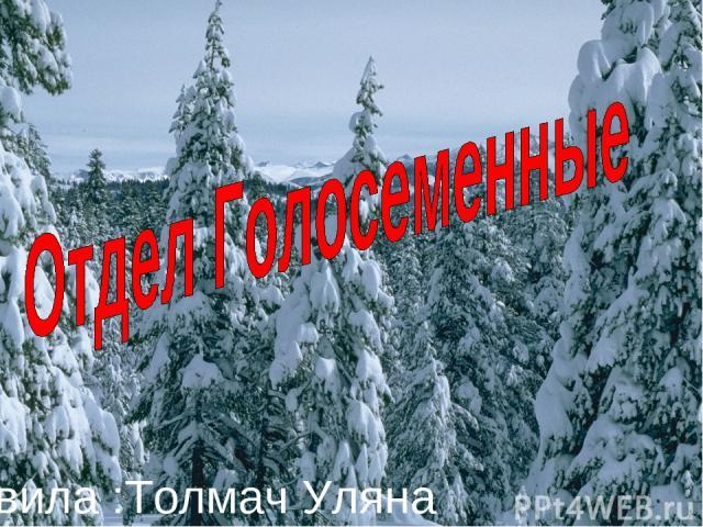 Подготовила :Толмач Уляна