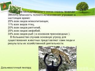 По оценкам Международного союза охраны природы (МСОП), опасность полного исчезно