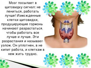 Мозг посылает в щитовидку сигнал: не лениться, работать лучше! Изможденные клетк