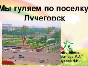 Мы гуляем по поселку Лучегорск Подготовила: Дрынова М.А Щурова Н.И..