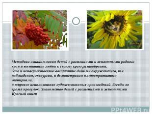 Методика ознакомления детей с растениями и животными родного края и воспитание л