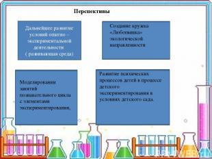 Перспективы Дальнейшее развитие условий опытно – экспериментальной деятельности