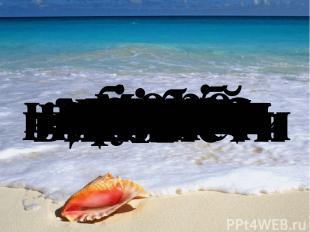 море моряк літо літній берег човен корабель медуза мушля краб плавати плавець пл