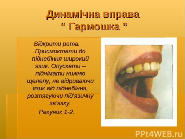 """Динамічна вправа """" Гармошка """" Відкрити рота. Присмоктати до піднебіння широкий язик. Опускати – піднімати нижню щелепу, не відриваючи язик від піднебіння, розтягуючи під'язичну зв'язку. Рахунок 1-2."""