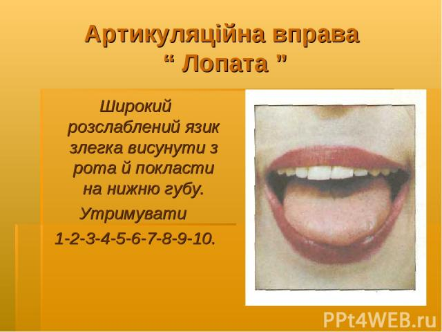 """Артикуляційна вправа """" Лопата """" Широкий розслаблений язик злегка висунути з рота й покласти на нижню губу. Утримувати 1-2-3-4-5-6-7-8-9-10."""