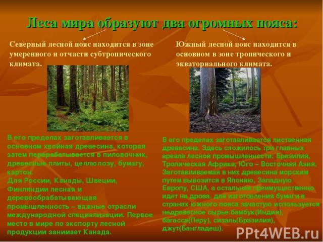 Леса мира образуют два огромных пояса: Северный лесной пояс находится в зоне умеренного и отчасти субтропического климата. Южный лесной пояс находится в основном в зоне тропического и экваториального климата. В его пределах заготавливается в основно…