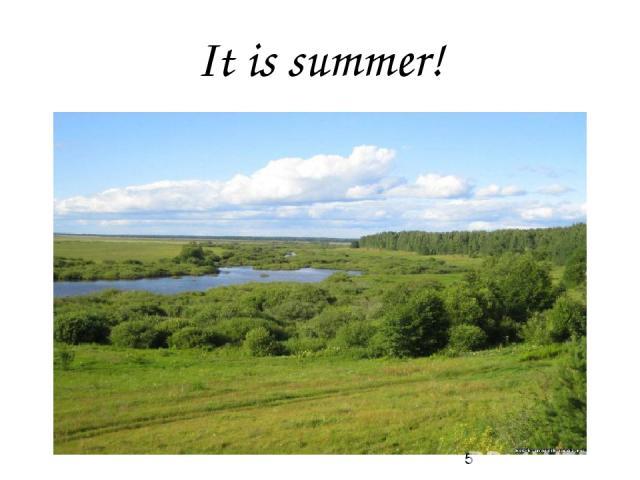 It is summer!