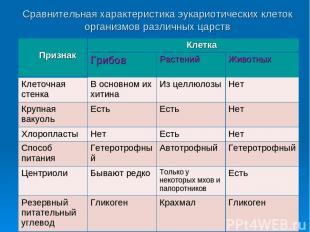Сравнительная характеристика эукариотических клеток организмов различных царств