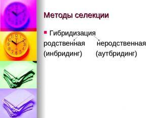 Методы селекции Гибридизация родственная неродственная (инбридинг) (аутбридинг)