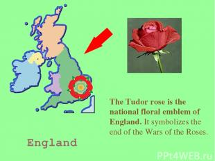 England The Tudor rose is the national floral emblem of England. It symbolizes t