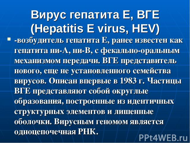 Вирус гепатита Е, ВГЕ (Hepatitis E virus, HEV) -возбудитель гепатита Е, ранее известен как гепатита ни-А, ни-В, с фекально-оральным механизмом передачи. ВГЕ представитель нового, еще не установленного семейства вирусов. Описан впервые в 1983 г. Част…