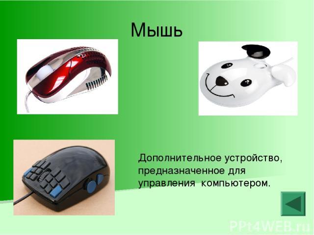 Мышь Дополнительное устройство, предназначенное для управления компьютером.