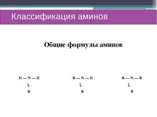 Классификация аминов Н — N — H R — N — H R — N — R │ │ │ R R R Общие формулы ами