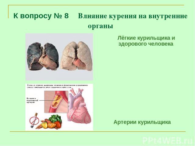 К вопросу № 8 Влияние курения на внутренние органы Лёгкие курильщика и здорового человека Артерии курильщика