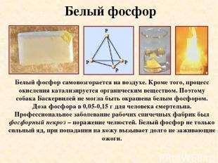 Белый фосфор Белый фосфор самовозгорается на воздухе. Кроме того, процесс окисле