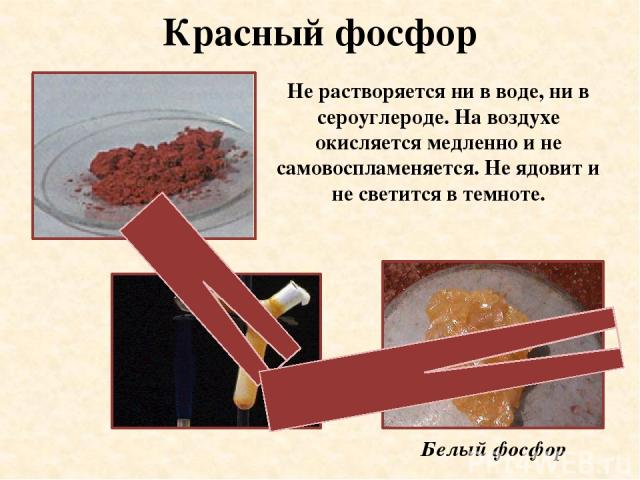 Красный фосфор Не растворяется ни в воде, ни в сероуглероде. На воздухе окисляется медленно и не самовоспламеняется. Не ядовит и не светится в темноте. Белый фосфор