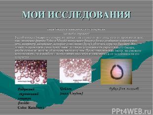 МОИ ИССЛЕДОВАНИЯ Типы бисера в зависимости от покрытия (способа окраски) Устойчи