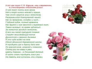 А вот как пишет С.Я. Маршак, наш современник, в стихотворении «Абхазские розы»: