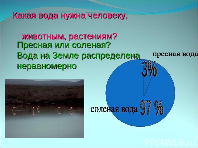 Какая вода нужна человеку, животным, растениям? Пресная или соленая? Вода на Земле распределена неравномерно