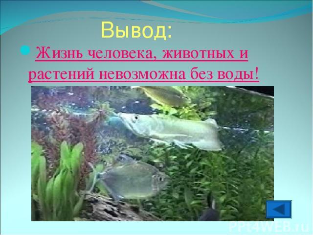 Вывод: Жизнь человека, животных и растений невозможна без воды!