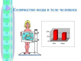 Количество воды в теле человека
