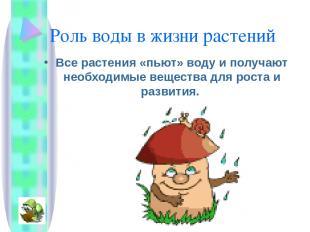 Роль воды в жизни растений Все растения «пьют» воду и получают необходимые вещес