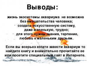 жизнь экосистемы аквариума не возможна без вмешательства человека; создать искус