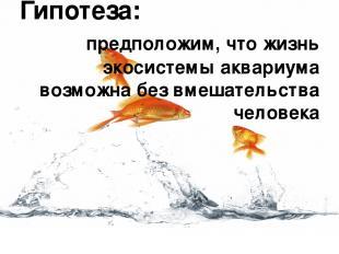 Гипотеза: предположим, что жизнь экосистемы аквариума возможна без вмешательства