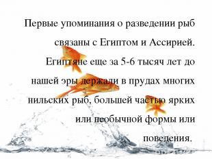 Первые упоминания о разведении рыб связаны с Египтом и Ассирией. Египтяне еще за