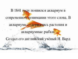 В 1841 году появился аквариум в современном понимании этого слова. В аквариуме с